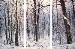 Winter Woods - <b>sold</b>